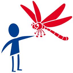 Libellen20 Kindern von 2 bis 6 Jahren